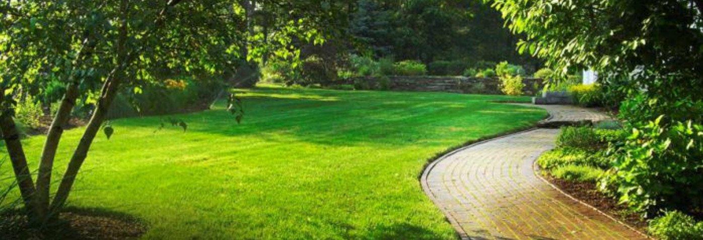 ландшафтное озеленение и благоустройство