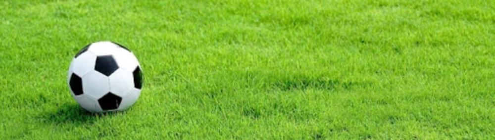 Рулонная трава для поля