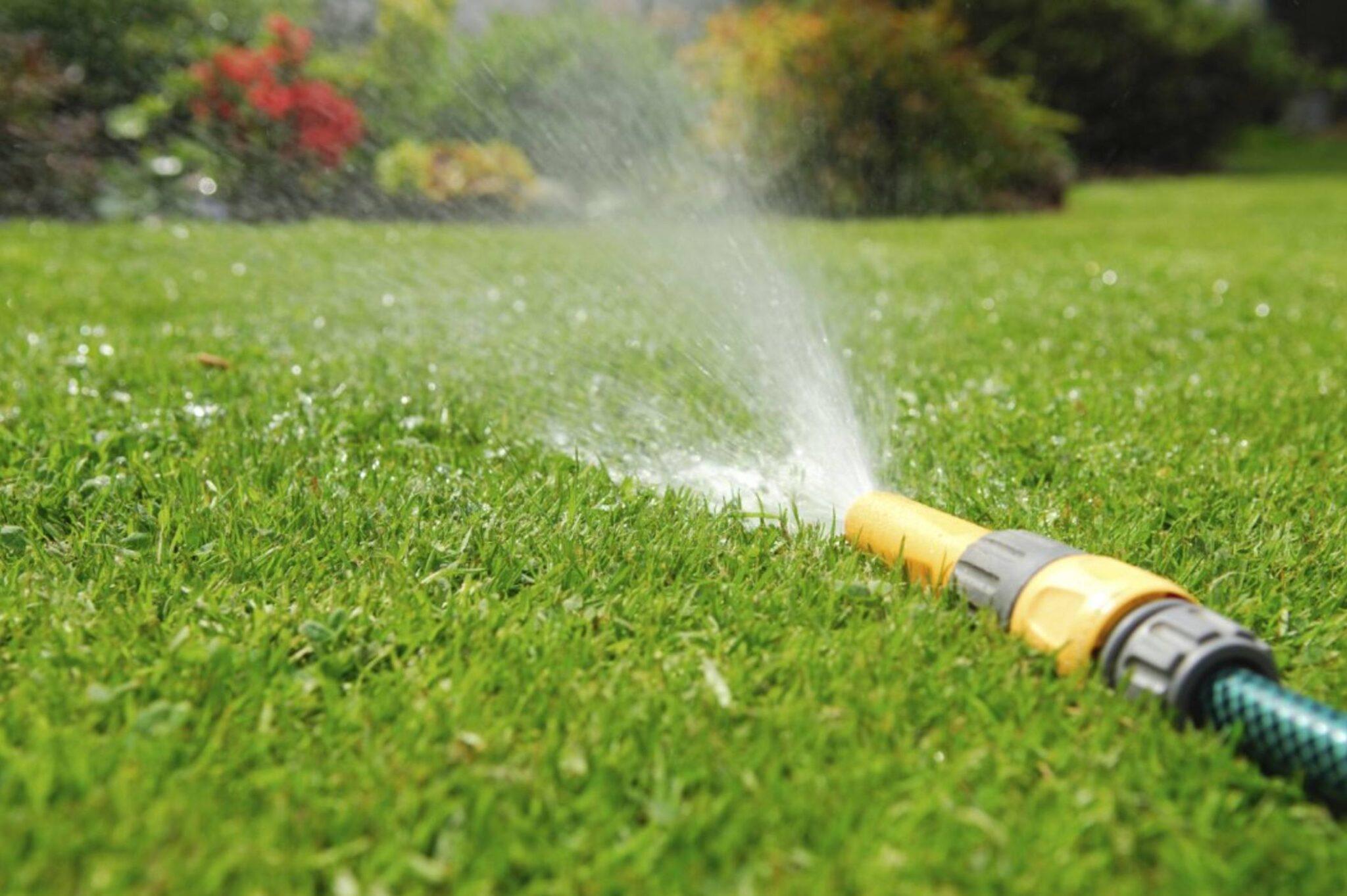 автоматичний полив газону
