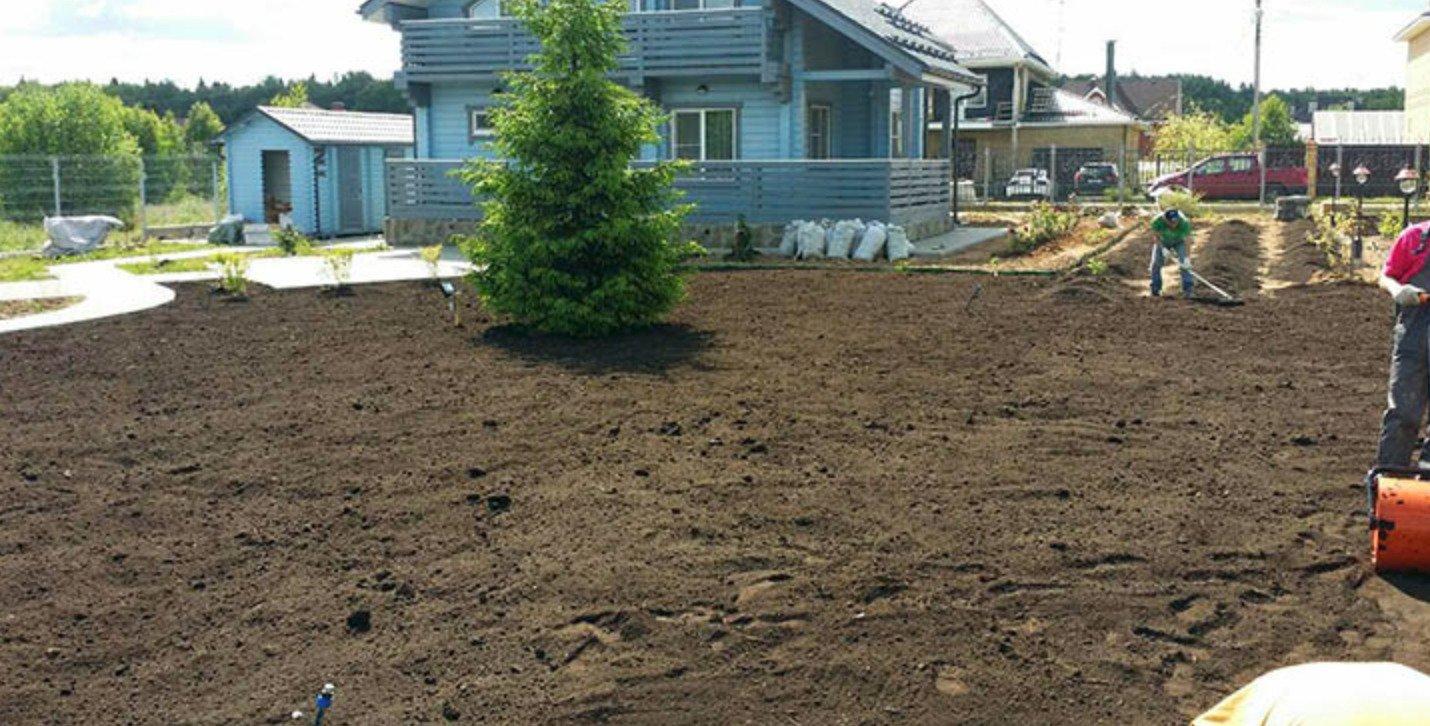 подготовка грунта под рулонный газон
